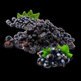 owoce-suszone-czarna-porzeczka